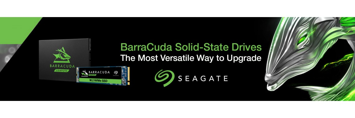 Seagate Baracudda